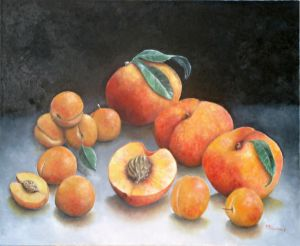 Abricots et pêches / Apricots and peaches